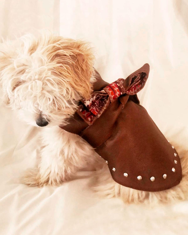 Baisesmamain - Cecilia Benetti Design - Giacca Doggy